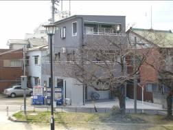 木ヶ崎公園の桜がきれいな家
