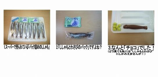 ファイル 553-1.jpg